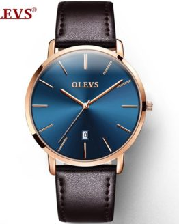 Fashion Wristwatch Mens Top Luxury Brand OLEVS Watches
