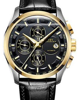 Swiss Brands Men's Automatic Self-Wind Watch Stainless Steel and with Brown Genuine Leather Band (Gold Black)