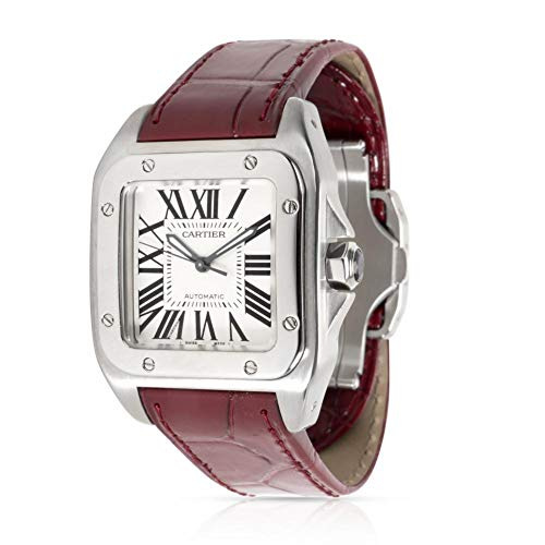 Cartier Santos 100 Automatic-self-Wind Male Watch