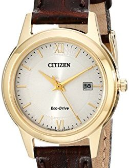 Citizen Women's Eco-Drive Stainless Steel Watch with Date